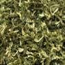 緑茶(リョウチャ)